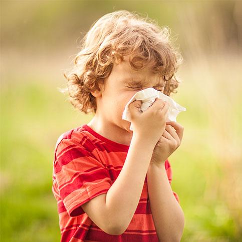 kleiner Junge putzt sich auf einer Wiese die Nase