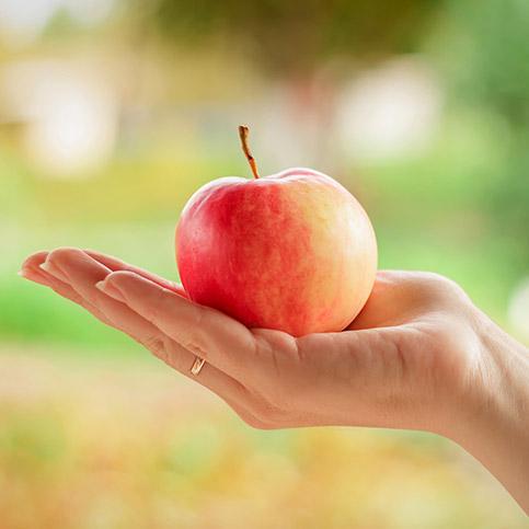Apfel wird von einer Hand gehalten